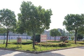 校园美景11