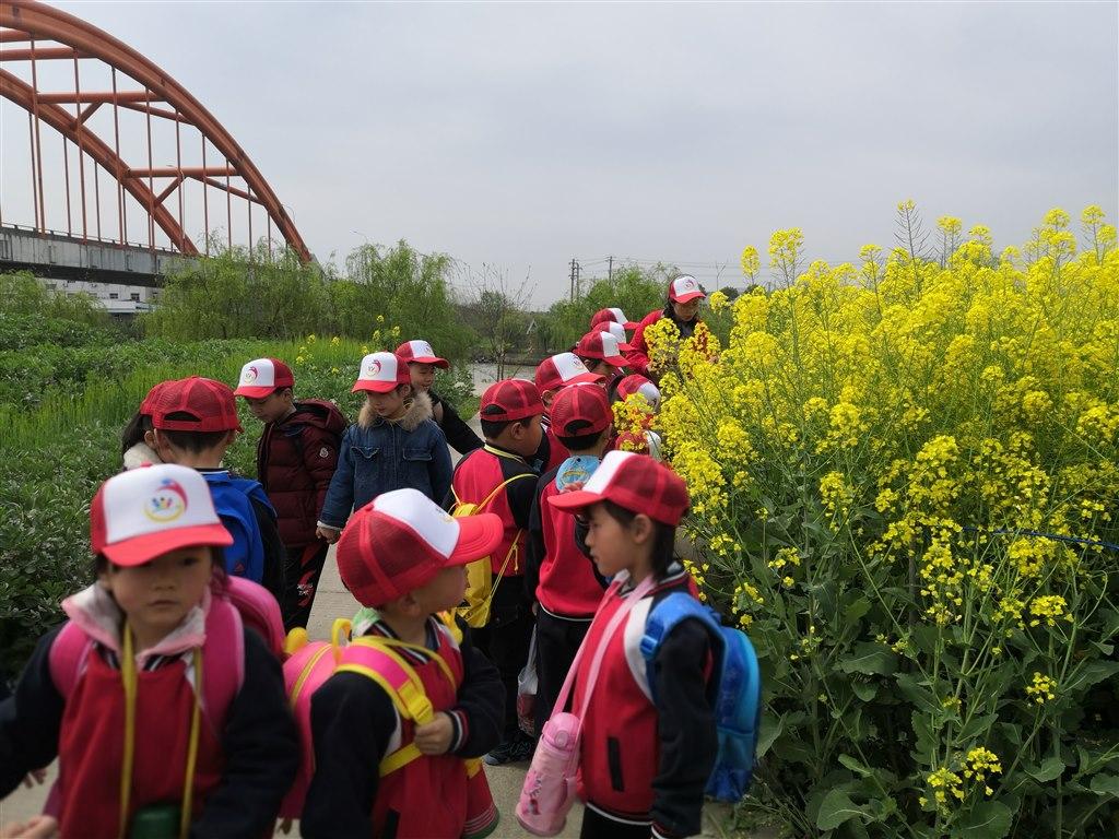 春暖花开、桃红柳绿的春天正是让幼儿感受大自然的好时节。4月2日上午,九里幼儿园大班的孩子们走出校园,走进春意盎然的农村,在春天的怀抱里,尽情放飞春天的喜悦。 一路上,孩子们都被农村里美丽的景色深深吸引,盛开的桃花、梨花、油菜花、翠绿翠绿的柳条、麦苗、小池塘里的小蝌蚪、农家的小鸡小鸭无不洋溢着春天的气息,孩子们就像一只只快乐的小鸟置身其中。 随后,孩子们来到九里公园,围坐在一起和好朋友分享美味的食物,开心的吹泡泡、做游戏,在游玩过程中我们每个孩子都是环保小卫士,尽管年龄小,但看到垃圾就捡起来,把自己吃下的